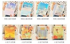 PP / A4 inserts / cute file folder