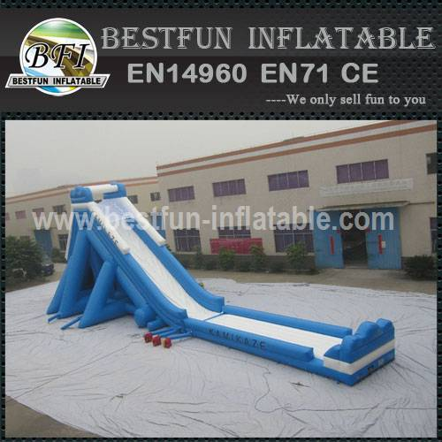 Hippo Inflatable Water Slide