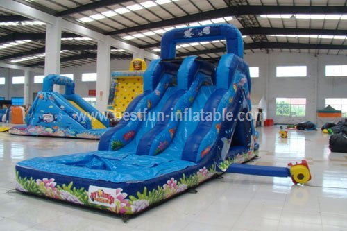 Small Undersea World Hippo Inflatable Water Slide