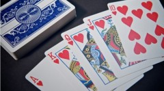 PRESTIGE BICYCLE Plastic playing cards-China manfacturer