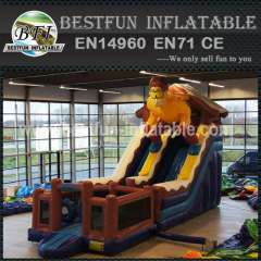 Skier inflatable commercial slide