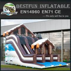 Super Toboggan Winter Slide