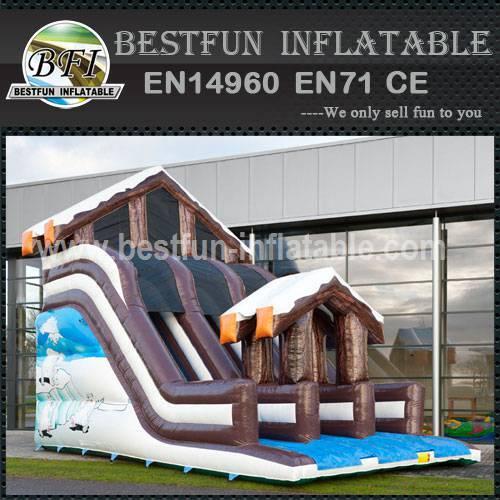 Super Toboggan Winter Slide