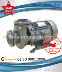 Electric In-Line Water Pump