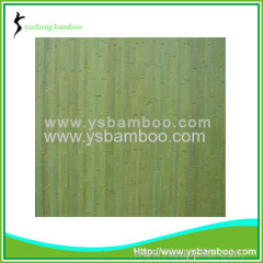 outside bamboo wall covering