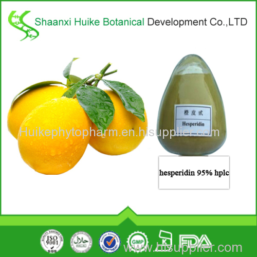 factory supply natural hesperidin hplc powder