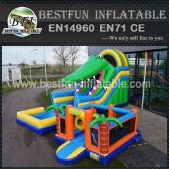 New Design Crocodile Inflatable Slide