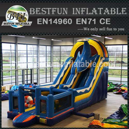 Inflatable Blue Dolphin Slide