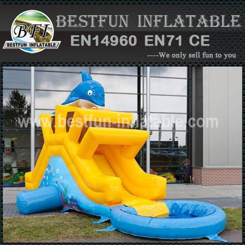 Small Slide Inflatable Dolphin
