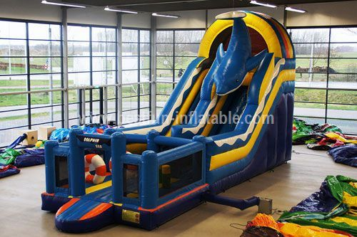 Attractive inflatable dolphin slide with pool
