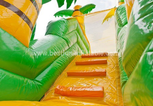Functional inflatable jungle slide