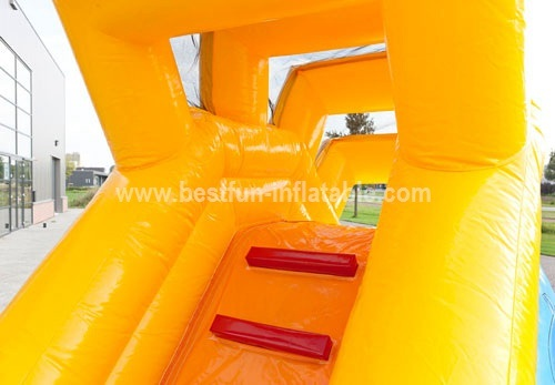 Lovely animaled inflatable dolphin sliding from china