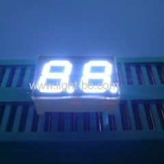 small white led display; 2 digit white led display