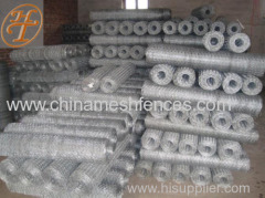 Electro Galvanized Woven Hexagonal Wire Mesh