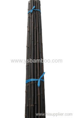 straight and strong bamboo poles