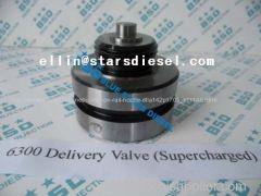 Marine Engine Delivery Valve 6300