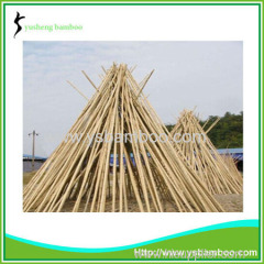 Natural factory moso bamboo poles sale