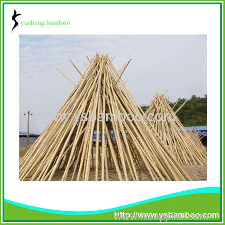 Natural factory moso bamboo poles sale