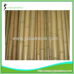 Bamboo stakes for garden