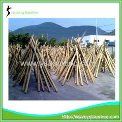 Construction Grade Bamboo Poles