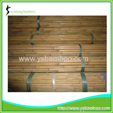 Bamboo Stakes for Tomato Plants