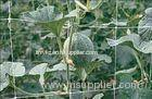 plant support net crop support netting climbing plant support mesh