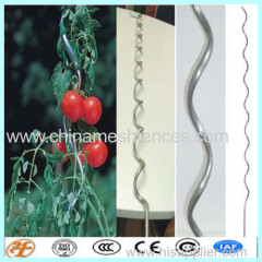 tomato spiral stakes wire