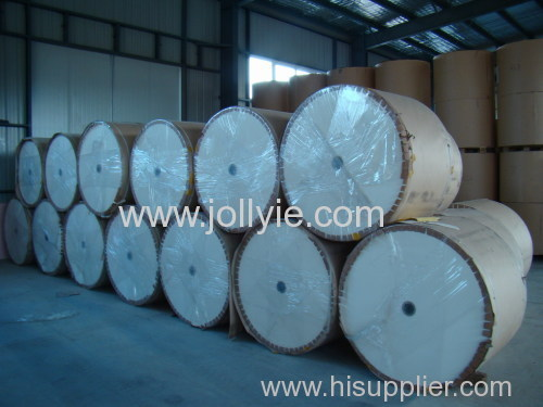 pe cotated paper roll for sale