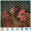 factory supply first class chicken wire netting