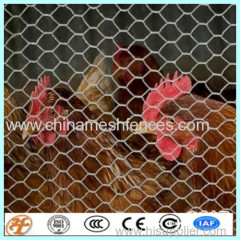 hexagonal wire meesh netting fence
