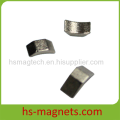 Small Customized Segment Neodymium Magnets