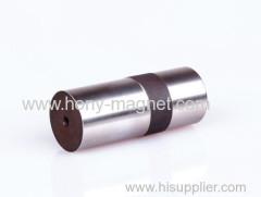 Compressed Bonded Neodymium Magnet