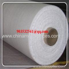 fiberglass wire mesh / fiberglass wall plaster mesh
