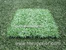 Waterproof 12800Dtex Fake Artificial Grass Flooring Lawn with Plastic Base for Park