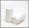 16oz PLA paper cups disposable blank