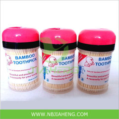 High Quality Bamboo Toothpick in Plastic Toothpick Holder
