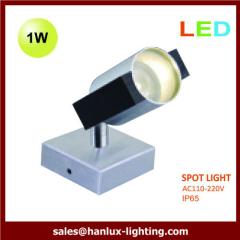 1W high power led spoot light