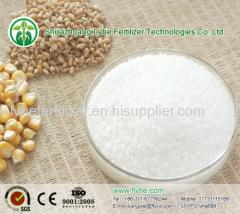 Ammonium Sluphate Caprolactam process