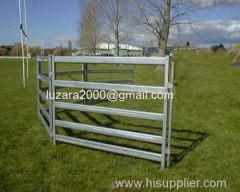 Cattle Stockyard Fence Panel