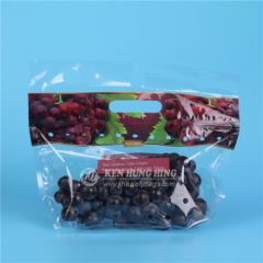 SGS Approved Zip Plastic Fruit Bag Stand up Pouches Packaging