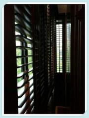 China Wooden Timber Shutter Manufacturer