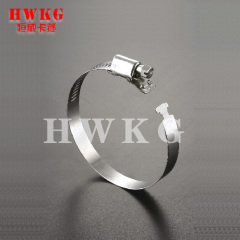 Series Quick release hose clamp