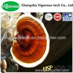 Reishi Extract powder /Ganoderma Lucidum Extract Powder
