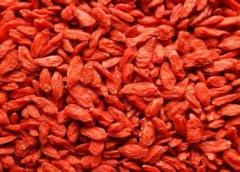 2014 new crop organic goji berry