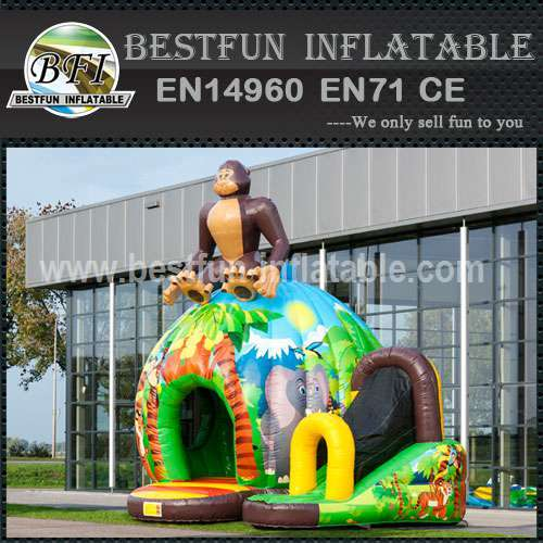 Cheap indoor inflatable bouncy slide