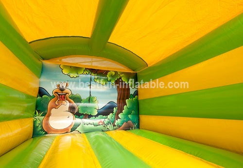 Mini Jungle bouncer with roof