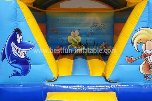Mini Marin roof bouncer