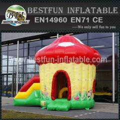 Lovely inflatable bouncy slide