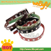 wholesale pet dog collar