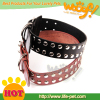 wholesale pet protective collar